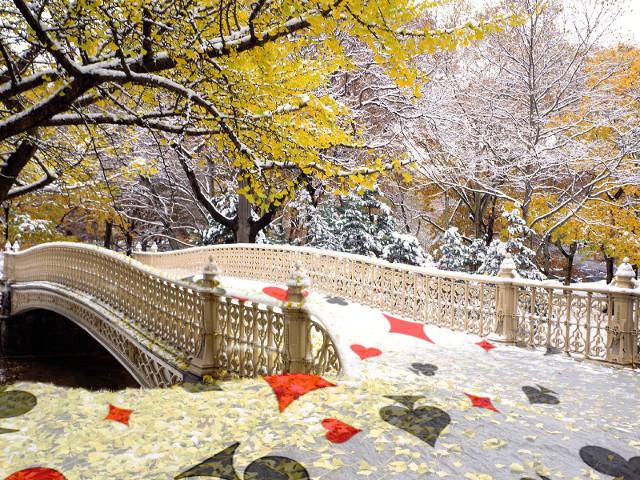 Passeggiando a Central Park