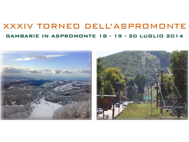 Torneo dell'Aspromonte, 18-19-20 Luglio 2014