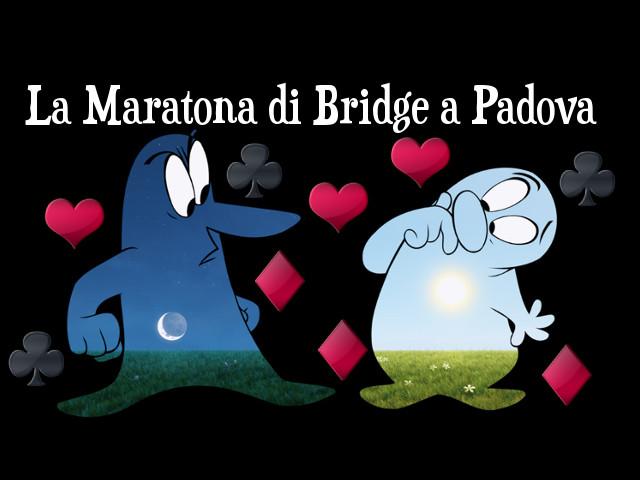 14 Giugno 2014: maratona di Bridge a Padova